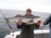 julyfish_2008