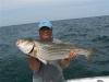 julyfish_2041