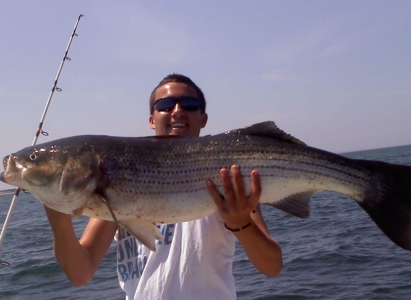 Stripers cape cod fishing charters for Cape cod fishing