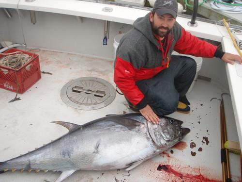 Nice tuna on deck
