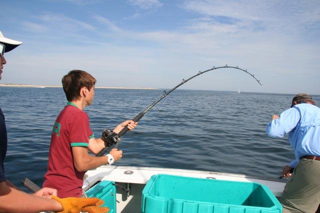 Articles cape cod fishing charters part 3 for Cape cod fishing charters