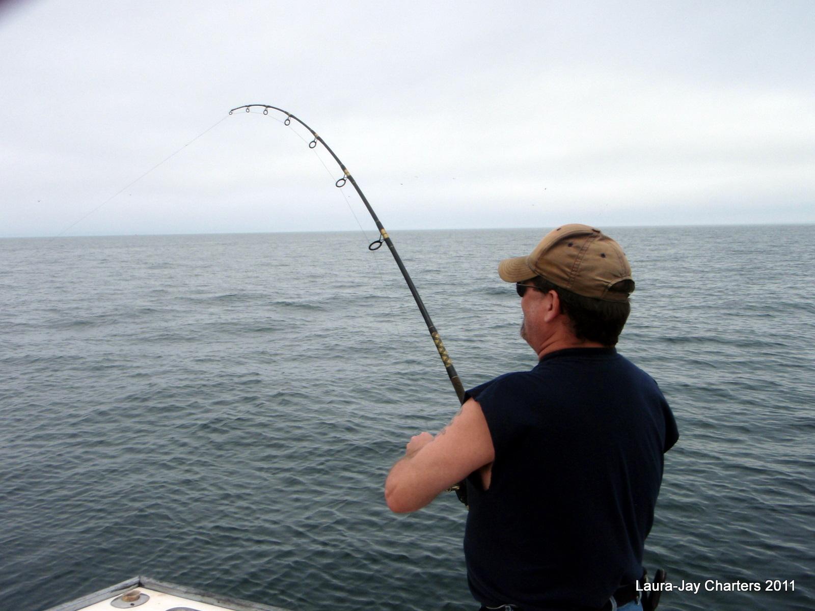 Cape cod striper charter cape cod fishing charters for Striper fishing cape cod
